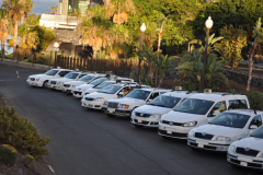 Taxi Driver Santa Cruz Tenerife autos estacionados